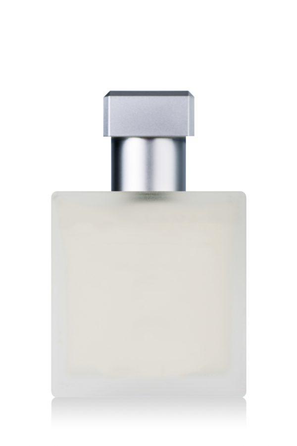White Datura